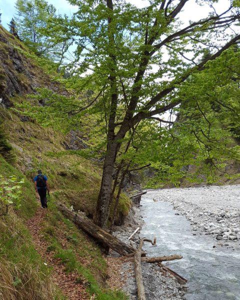 Ein schöner Wanderweg 😊😎 #visitvorarlberg #vorarlberg #meinvorarlberg #loves_austria Saminatal