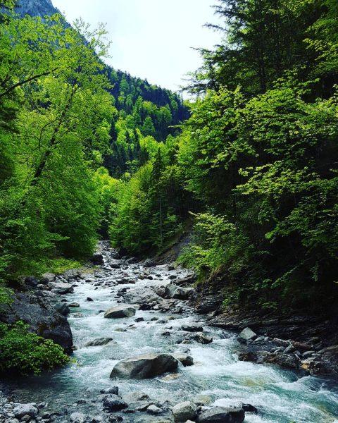 #meinvorarlberg #vorarlberg #visitvorarlberg #österreich #discoveraustria #ig_austria #365austria Saminatal