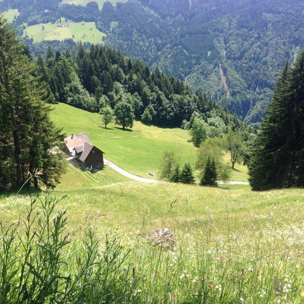 #Alpwegkopf Alpwegkopfhaus
