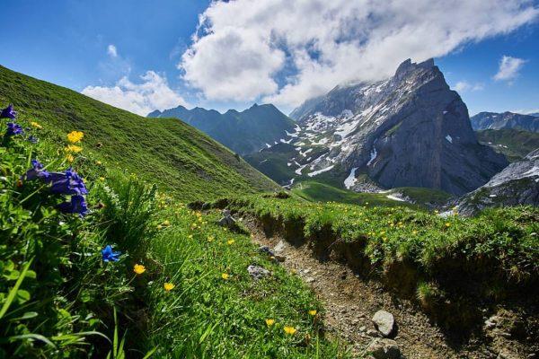#rätikon #drusenfluh #naturephotography #nature #meinvorarlberg #vorarlbergwandern #picoftheday #visitvorarlberg #sony📸 #sonya6000 Verajoch