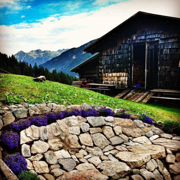 Back... #montafon #montafonmoments #gargellen #berge #mountains #klatschenmussdas #ronggalpe #scheen #meinmontafon Alpe Rongg