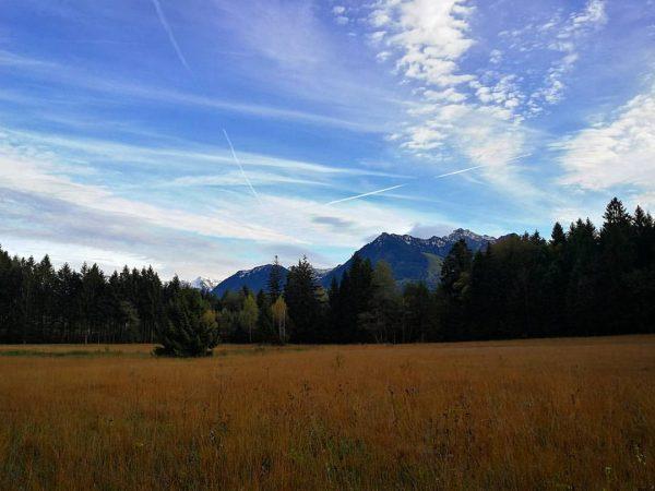 Austrian wilderness | #gasserplatz #hochmoor Göfis, Vorarlberg, Austria