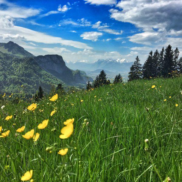 L🍭VE LIFE #feelslikesummer #vorarlberg #hike #familytime #pollensturm Schwende (berg)