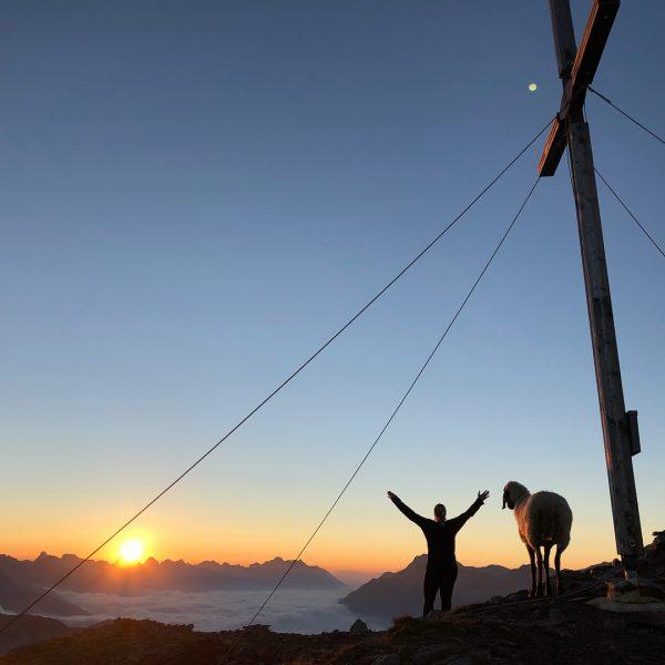 • Wandern ist die vollkommenste Art der Fortbewegung, wenn man das wahre Leben ...