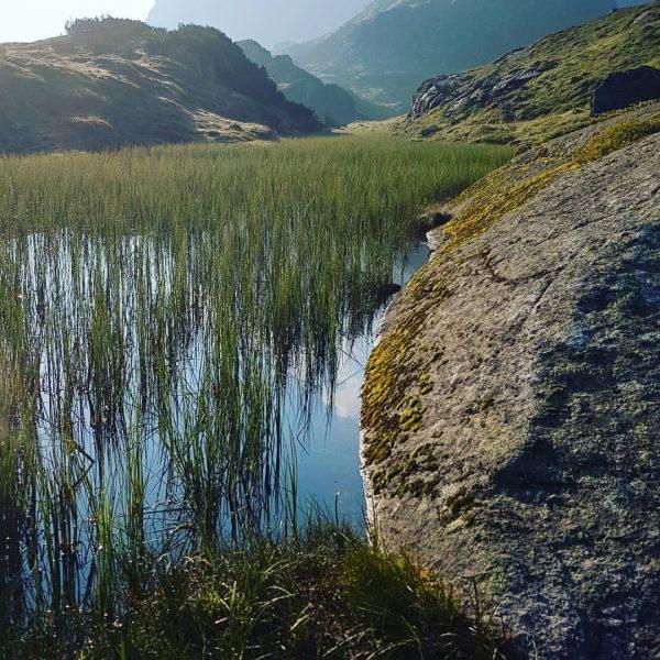 #hiking #wanderlust #wandern #silvretta #stemennli #sun #summer #mountains #montafon #meinmontafon #cooldown #vallülasee #fun ...