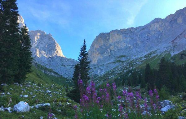 Rätikon . . . #outdoor #nature #thespiritofmountainsports #mountains #tradeclimbing #alpineclimbing #climbsleeprepeat #rätikon #kirchlispitzen ...