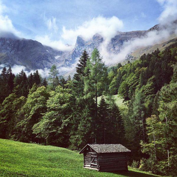 Die schönste Jahreszeit zum wandern hat begonnen 🍁 #bergliebe #schattenlagant #brand #brandnertal #gletschertolla ...