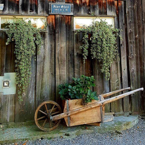 #mountainbiketour #doors #tugstein #ranzenberg #schönermann #emserhütte #rüttkopf #gsohlalpe #götznerberg #wood