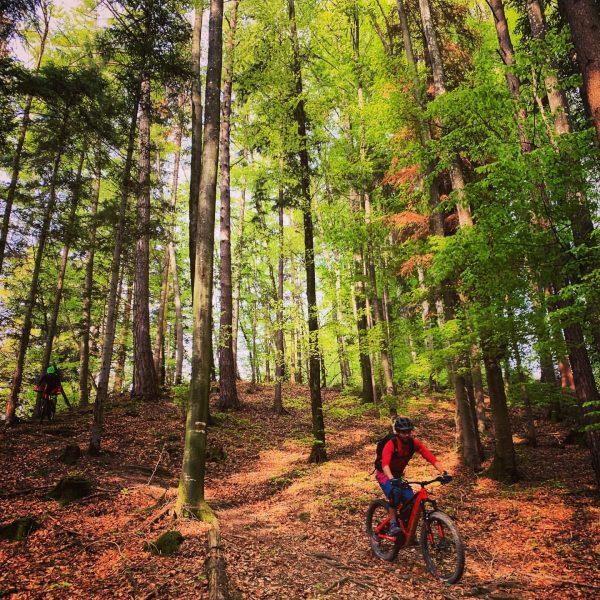 #hometrails #worklifebalance #tourenspuren #fahrwerk #bikeguide #entdeckeneuland #xitrail #mtb #emtb #freeride #enduro #trail #bikeporn ...