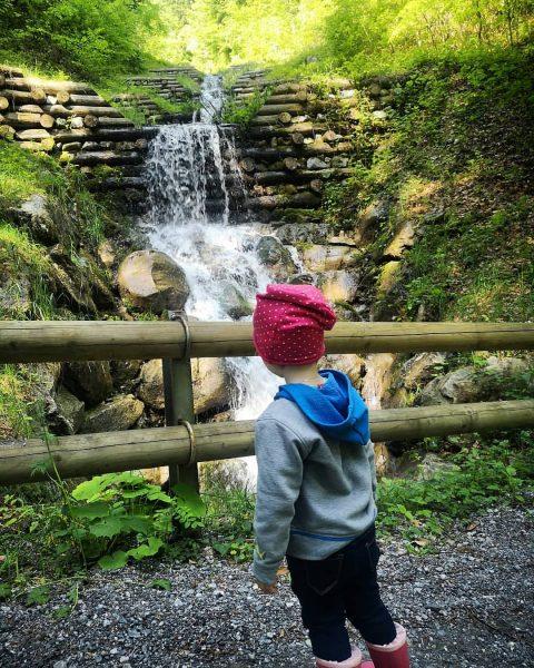 #naturentdecken Wir versuchen so oft es geht wandern, spazieren, einfach draußen in der ...