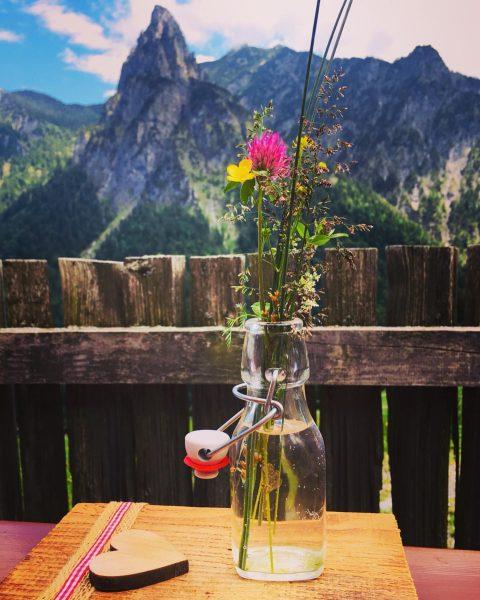 #alpwandern #amerlügen #feldkircherhütte #saminatal #amerlugalpe #sarojaalpe #gaudenzaalpe #geheimtipp #brettljause #ausblick #wandern #vorarlbergwandern #berge ...
