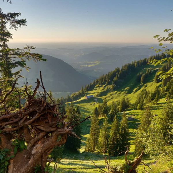 #seelekopf #hochgrat #staufnerhaus #berge #hiking #somner Seelekopf