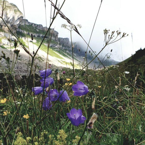 Bergtour auf den Hohen Ifen ⛰ Heute Morgen noch kurz den Starkregen abgewartet ...
