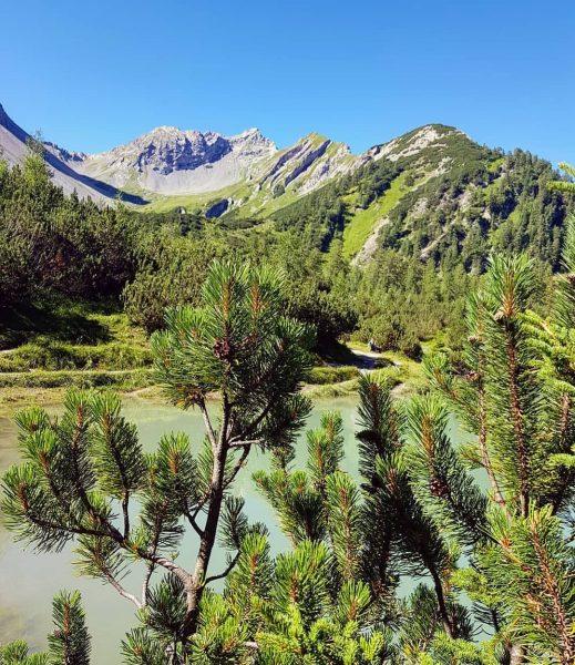 ⛰ perfect nature... 《swipe #nenzingerhimmel #panüelalpe #hirschseele #hirschsee #setschalpe #ländle #vorarlberg #austria #alps ...