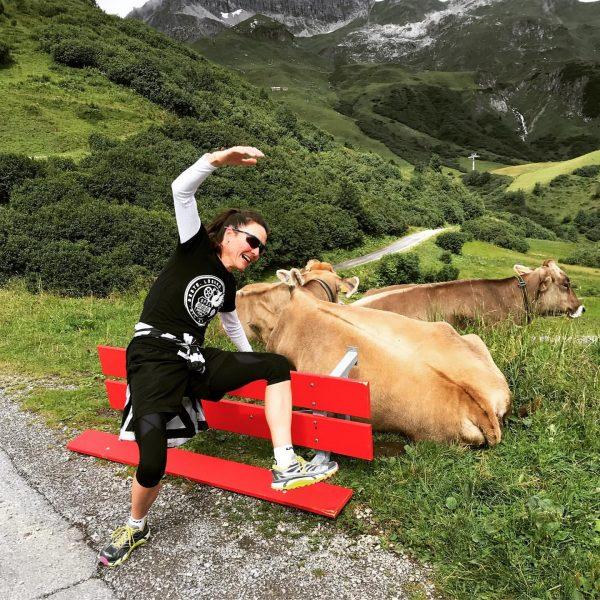 Ich hab's doch gewusst: Kühe sind gefährlich! Gut, beim Laufen soll man sich ...