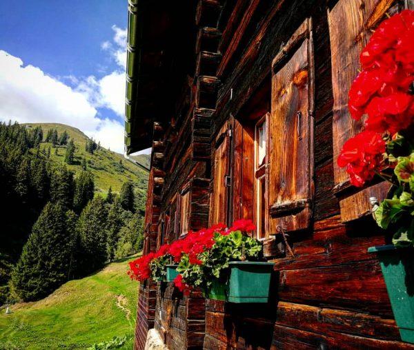 Österreich I #montafon #ronggalpe #österreich #austria #wandern #hiking #wanderlust #klettern #sommer #alpe #alpen ...