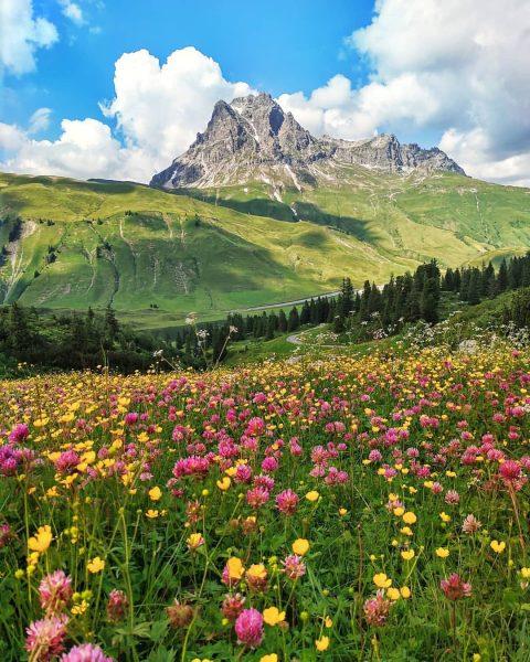 Widderstein #dezezomer . . #widderstein #vorarlberg #oostenrijk #bregenzerwald #visitbregenzerwald #mountains #wandelenindebergen #hikinginthemountains #hochtannbergpass ...