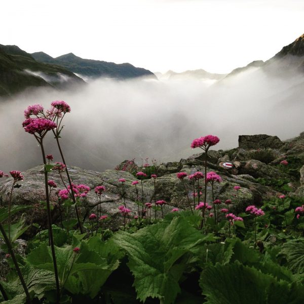 Morgenstimmung in den Alpen Tübinger Hütte