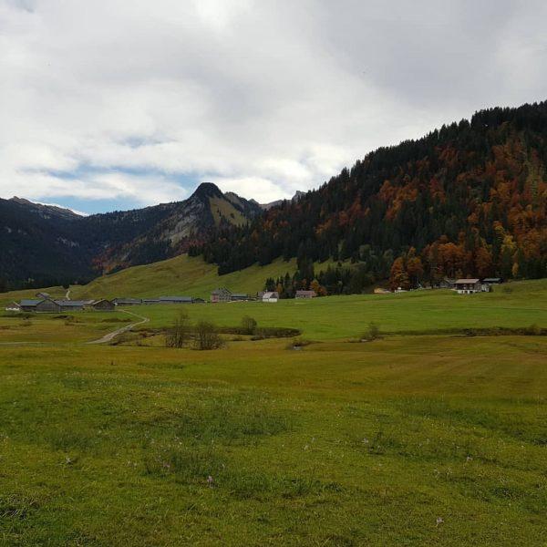Rundwanderung Schönenbach #kretzbodenalpe #schönenbach #jagdgasthausegender #bregenzerwald #herbst #nature Jagdgasthaus Egender