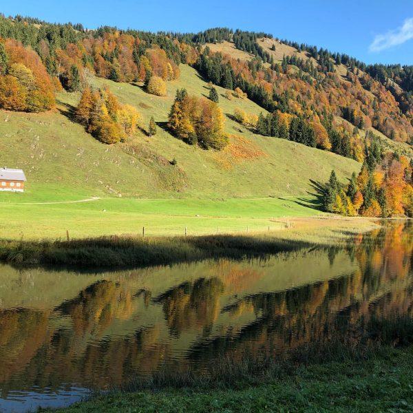 #lecknersee #naturepur #lovethisplace #wonderfulworld #vorarlberg #bregenzerwald #autumn #ländleherbst #ländleliebe Lecknertal