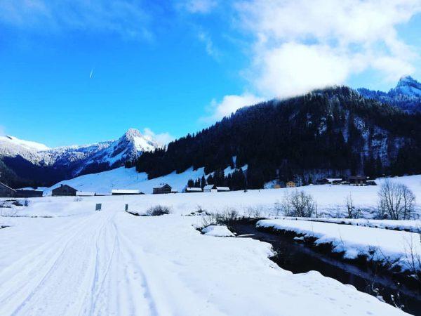 Schönenbach ❄️🏔️☀️😎 #schneeschuhwandern #wanderführer #winter #käsknöpfle #winterwonderland #urlaub #wanderlust #gaude #vorarlberg #visitvorarlberg #bergpartner ...