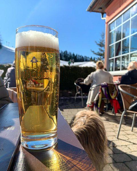 #Beer #Bier #Alpen #Farny Pfänderdohle