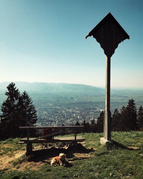 Rauf auf den Berg und das Beste aus dem machen, was man nicht ...