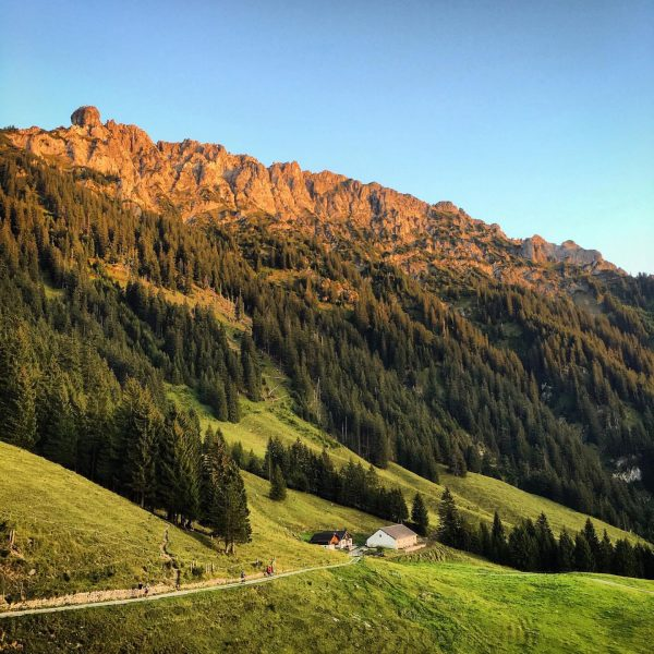 Heute träumen - im Sommer erleben! Auf diese Aussichten von der Gafadurahütte aus ...