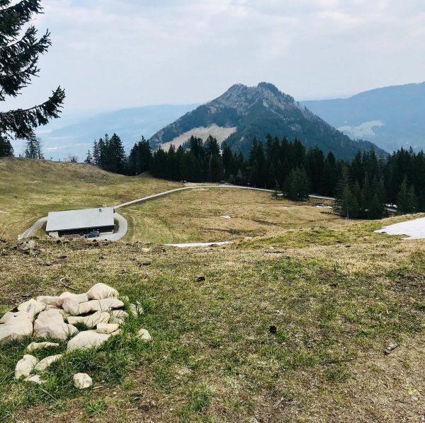#trailrunning #mountainrunning #instarunners #ebnit #staufenalpe #hinterberg #spätenbachalpe #dornbirn Ebnit, Vorarlberg, Austria