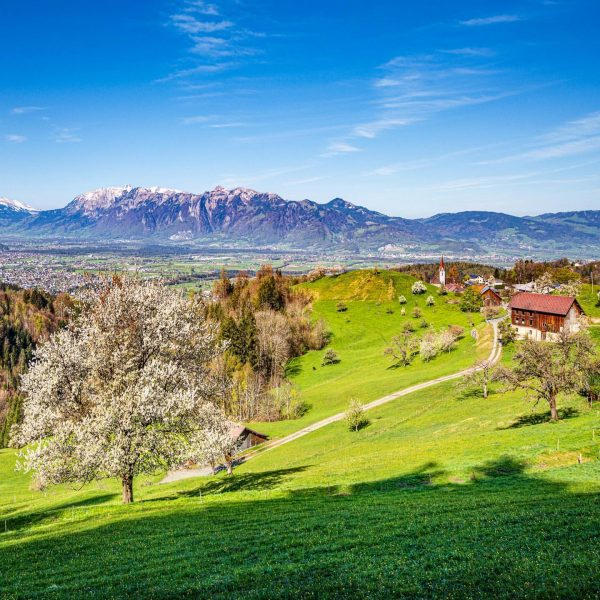 #spring in #vorarlberg #austria #visitaustria #visitvorarlberg #nature #landscapephotography #ig_austria #bns_austria #austriagram #loves_austria #alpen ...