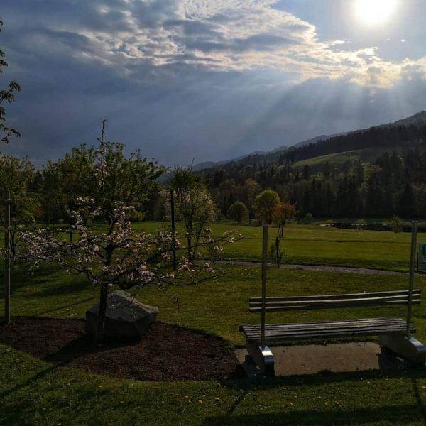 #GolfParkBregenzerwald #bregenzerwald #bregenz #dornbirn #hard #allgäu #oberstaufen #golf #golfplatz #golfisfun #golfschule #golfclub #golftime www.golf-bregenzerwald.com