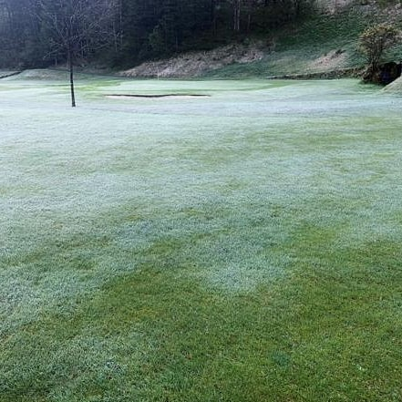 Tja mit Greens mähen heute morgen war wohl nix. Starker Bodenfrost hat unseren ...