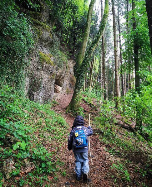 Kleine Runde auf den Gebhardsberg 💚 😃 #austria #vorarlberg #ländle #bregenz #gebhardsberg #fluh ...
