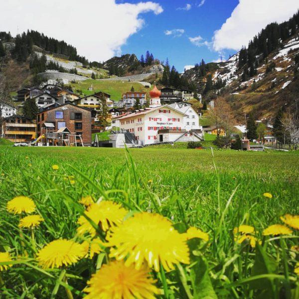 Summer takes over... Step by step 🌱🌼🐛💧⛰️🌻 #stuben #arlberg #fckcrn #socialdistancing #summer #mountain ...