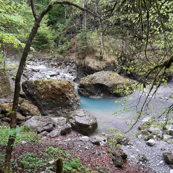 #vorarlberg #visitvorarlberg #österreich #visitaustria #austria #alpen #alpenregionbludenz #alpenliebe #alps #wasser #wasserfall #fluss #river ...