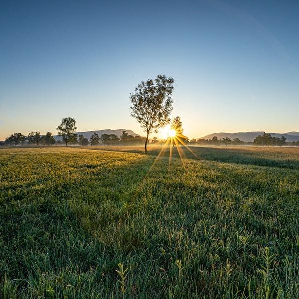 Let the first rays of light raise the nights curtain! #sunrisephotography #sunriseoftheday #sunrise_sunset_photogroup ...