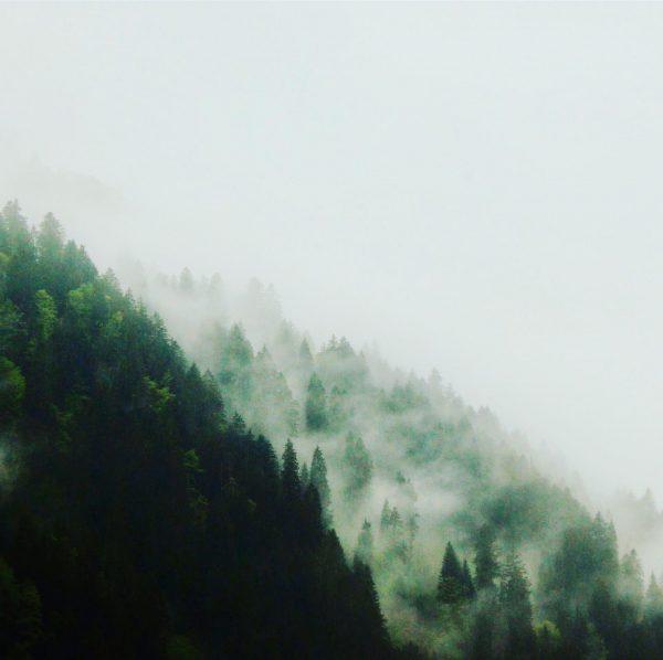Solange ich in den Bergen bin, habe ich das gleiche Morgenritual. Steh auf ...