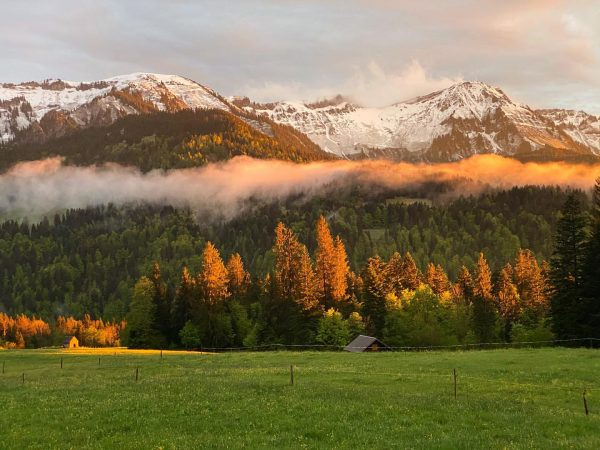 Happy to call this home #meinsibratsgfäll 🥰 Sibratsgfäll, Vorarlberg, Austria