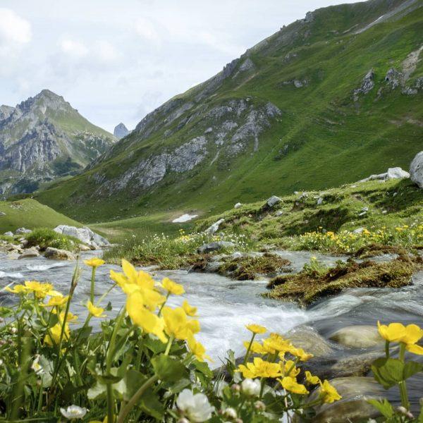 Erinnerst Du Dich auch gerne an all die Abenteuer in den Montafoner Bergen ...