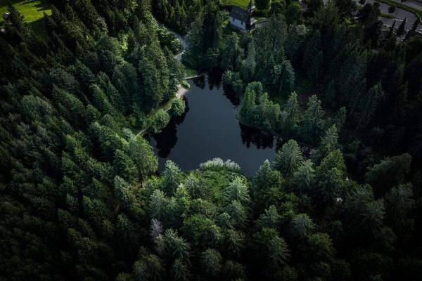 Perspektivenwechsel am Bödele 🙃 #6850dornbirn #dornbirn #visitvorarlberg #vorarlberg #visitaustria #austria Bödele