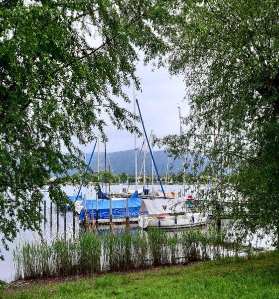 #visitvorarlberg #allkindsofnature #got__greatshots #lakeofconstance #bodensee #bodenseeliebe #bestpicturesgallery #bestlovethenature #total_meteo #bns_landscape #bns_nature #h2o_natura #loves_landscape ...