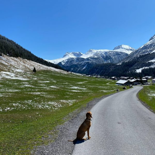 Ein Sonntagsspaziergang im wunderschönen Zugertal. Freude: am 26.6 starten wir in die Sommersaison, ...