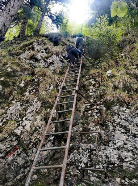 Leiterweg Karren ⛰️ #karren #dornbirn #hiking #climbing #vorarlberg #visitvorarlberg #ländle #rheintal #ladder #nature ...
