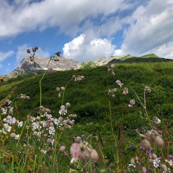 It will be time-we start the summer season in Oberlech on July 10th! ...