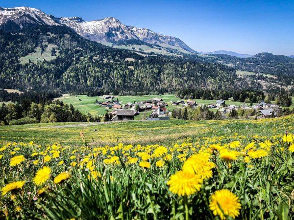 Der Frühling ist da 🤩 #meinsibratsgfäll #sibratsgfäll #bregenzerwald #visitbregenzerwald #voralberg #nature #outdoor #berge ...