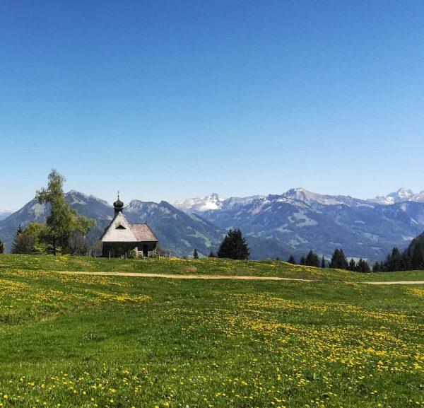 #bödele #bregenzerwald #vorarlberg #austria #nature #landscape #mountains #meadow #dandelions #trees #spring #lastsnowinthemountains #home ...