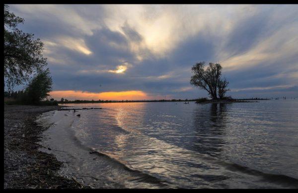 Am Rheinspitz #Sonnenuntergang heute am Rheinspitz # #bodenseeliebe #bodensee #bodenseebilder #bodenseeliebe #bodensee_de #bodenseekreis ...