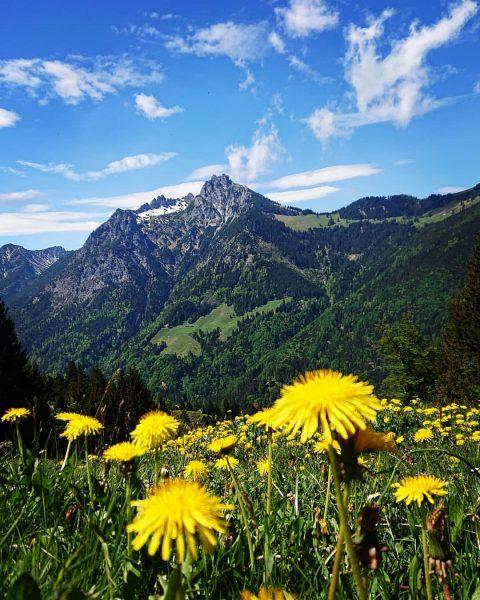 View from Bazora to the Drei Schwestern 😍 😎 🤗 . . . ...