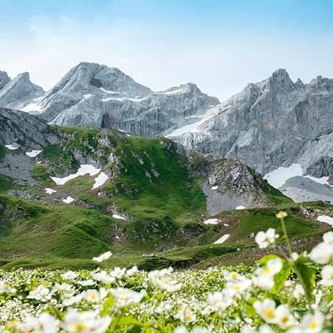Wie gestern bekannt wurde, sollen die Grenzen zwischen der Schweiz 🇨🇭 und Österreich ...