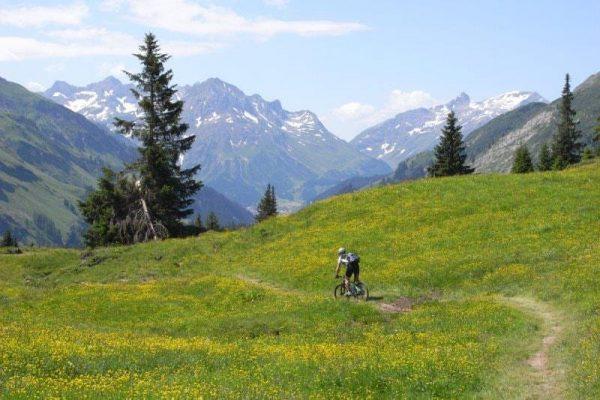 #bike #biketour #berge #natur #heimat #heimaturlaub #bregenzerwald #badreuthe